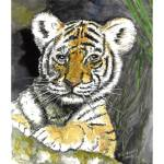 """Tiger cub"" by phils-art"