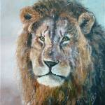 """""""Lion"""" by phils-art"""