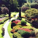 """Butchart Garden"
