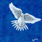 """""""white dove on terri"""" by kjgordon"""