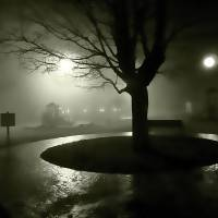 foggy park tree Art Prints & Posters by Yarr Remmelc