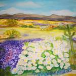 """Sonoran Spring"" by debbiepaints"