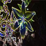 """Neon Lillies"" by aridesigns"