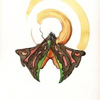 Butterfly Mandala I Art Prints & Posters by Stephanie Lee Jackson