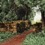 """""""Teal Garden"""" by mellowone"""