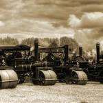 """Steam Road Rollers"" by ianjeffrey"