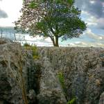 """Malham, North Yorkshire II"" by AndyBeattie"