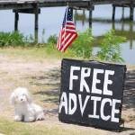 """Free Advice"" by GlendinePhotography"