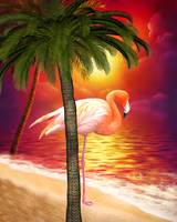 Tropical Paradise Flamingo Beach