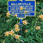 """Tiger Lilies and Historic Sign"" by MichaelStephenWills"