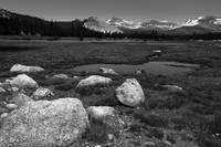 Tuolumne Meadow (B&W)