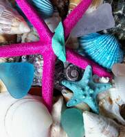 SHELLS , SEA GLASS, AND STAR FISH
