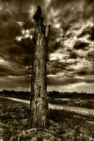 DeadTree2