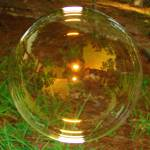 """bubble"" by Brightwood"