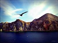 Cabo and the Cliffs
