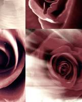 Muted Rose Collage