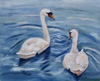 Simply Swans Original Oil Painting