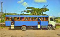 Bora Bora Tour Bus