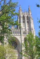 National Cathedral - Washington, DC