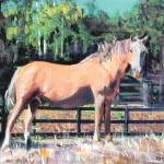"""Palomino Horse - Duster by Riccoboni"" by BeaconArtWorksCorporation"