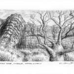 """Winjana Gorge, Kimberley, Western Australia"" by kimwainwright"