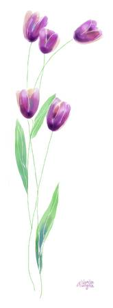 Simple Purple Tulips
