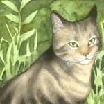 """Tabby in the Garden"" by yarmalade"