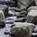 """""""Trickling Stream"""" by Spyder13x085"""