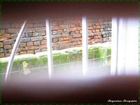 open ur eyes and see beyond ur window grills...