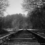 """Tracks"" by EricaBrownPhotography"