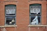The Lady In the Window