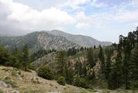 Angeles National Forest High Country