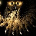 """Hootie Owls Nest"" by dduhaime55"