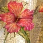 """""""Golden Hibiscus"""" by AlmaLee"""