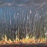 """Wildfire"" by heuscherartnoosa"