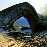 """""""Arch by the Lake"""" by roadsnottraveled"""