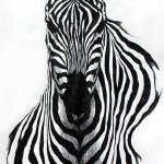 """Zebra"" by hedge"
