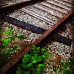 """Railroad Tracks"" by jbjoani2"