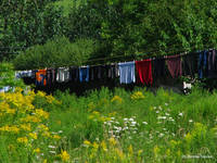 Summer Laundry Line_1098