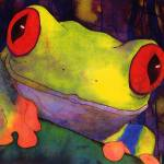 """Pura Vida Frog"" by wishbone"