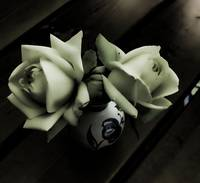 White roses with dark_ghostly filter from Topaz