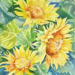 """Sunflowers"" by lindahaile"