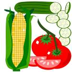 """""""Tomato, corn and cucumber"""" by debband"""