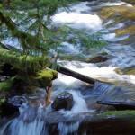 """""""Panther Falls, WA"""" by aRTPhotograph"""