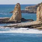 """Wilder Ranch SP Coastline 07"" by coljay"