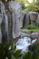 Waterfalls and Red Flowers