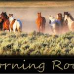 """The Morning Round Up"" by GlendaBorchelt"