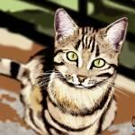 """Cat"" by CheekyRod"
