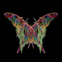 Contemporary Art - Butterfly