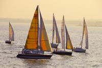 Regatta at sunset
